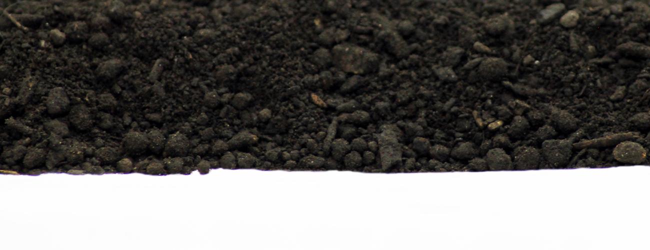 Mühlviertler Bio Schwarzerde