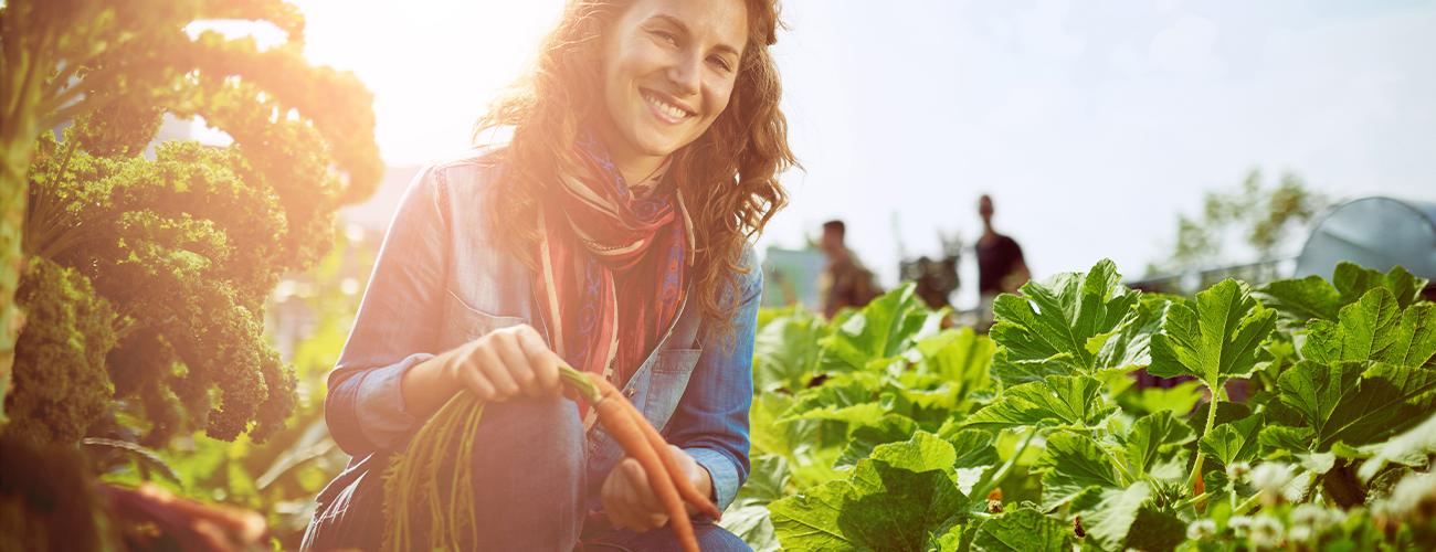 Kompost – der Schatz im eigenen Garten